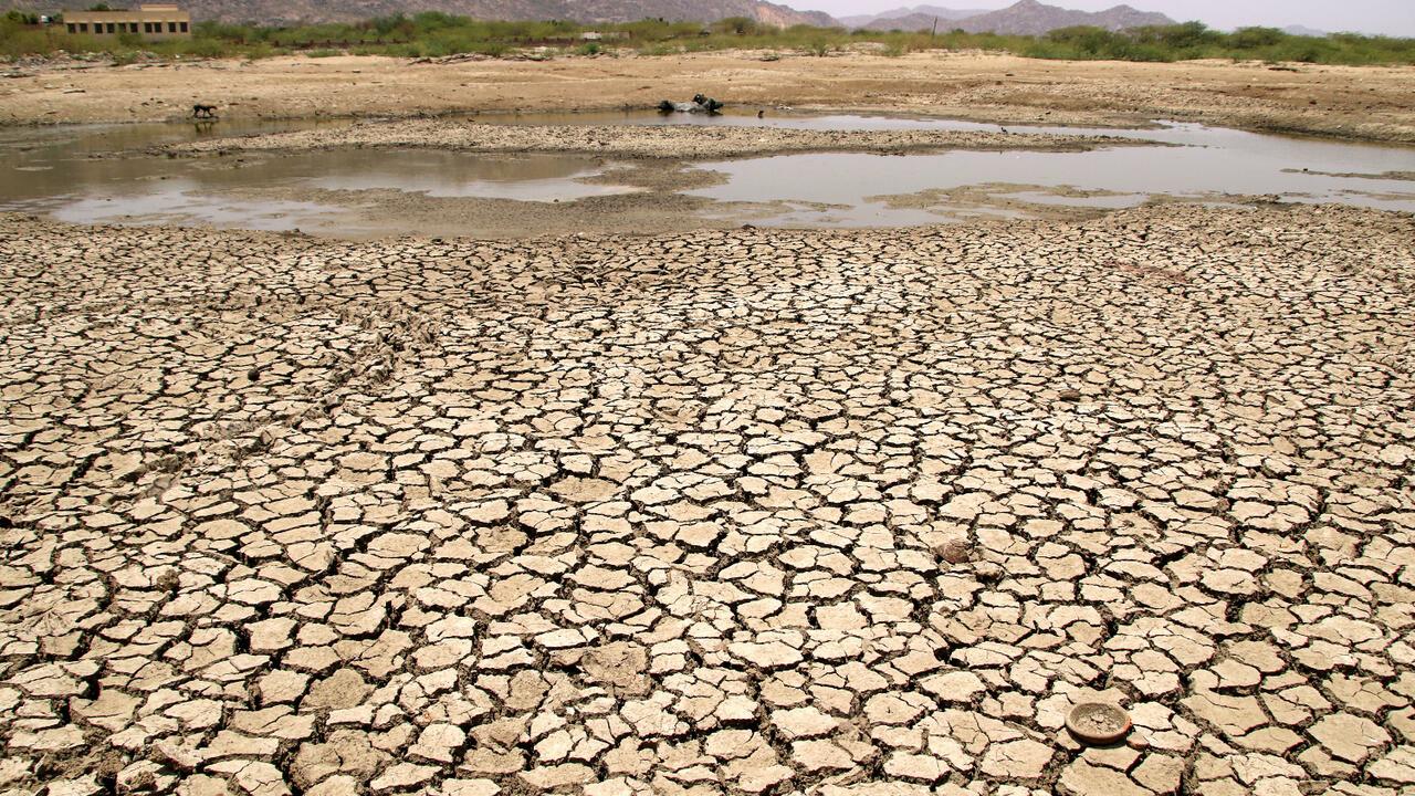 Inde: une canicule fait des ravages entre pénuries d'eau et décès dans le Nord - RFI