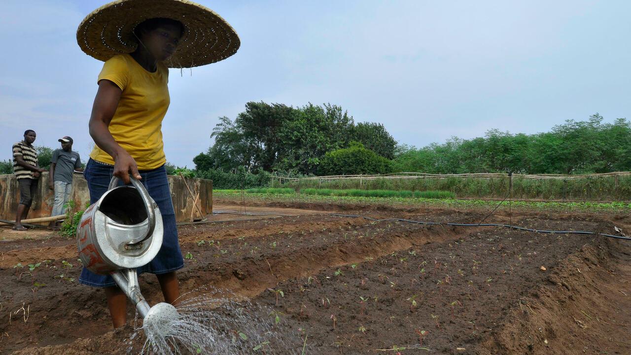 C'est pas du vent - L'agro-écologie peut nourrir le monde