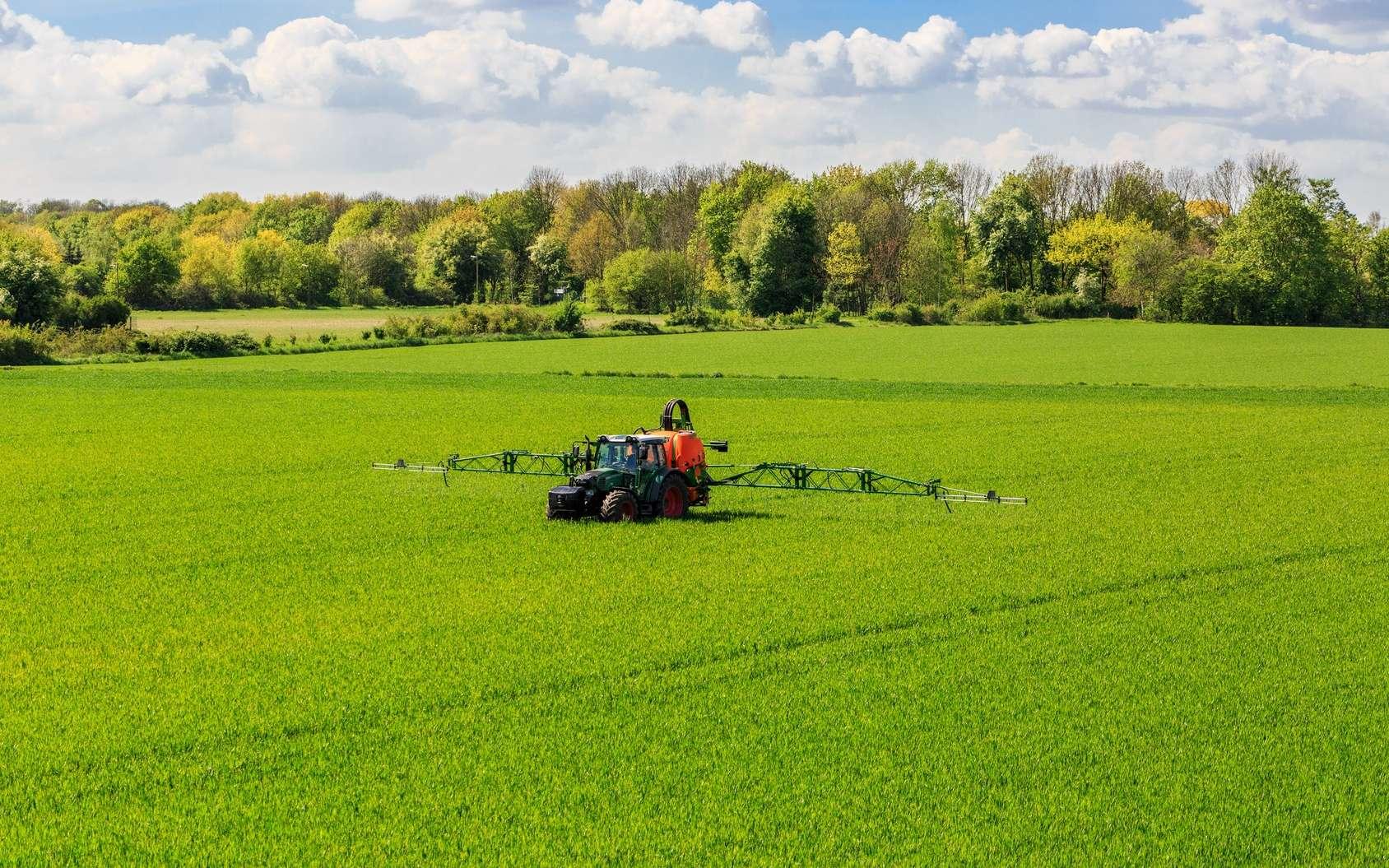 Roundup : l'exposition au glyphosate augmenterait de 40 % le risque de certains cancers