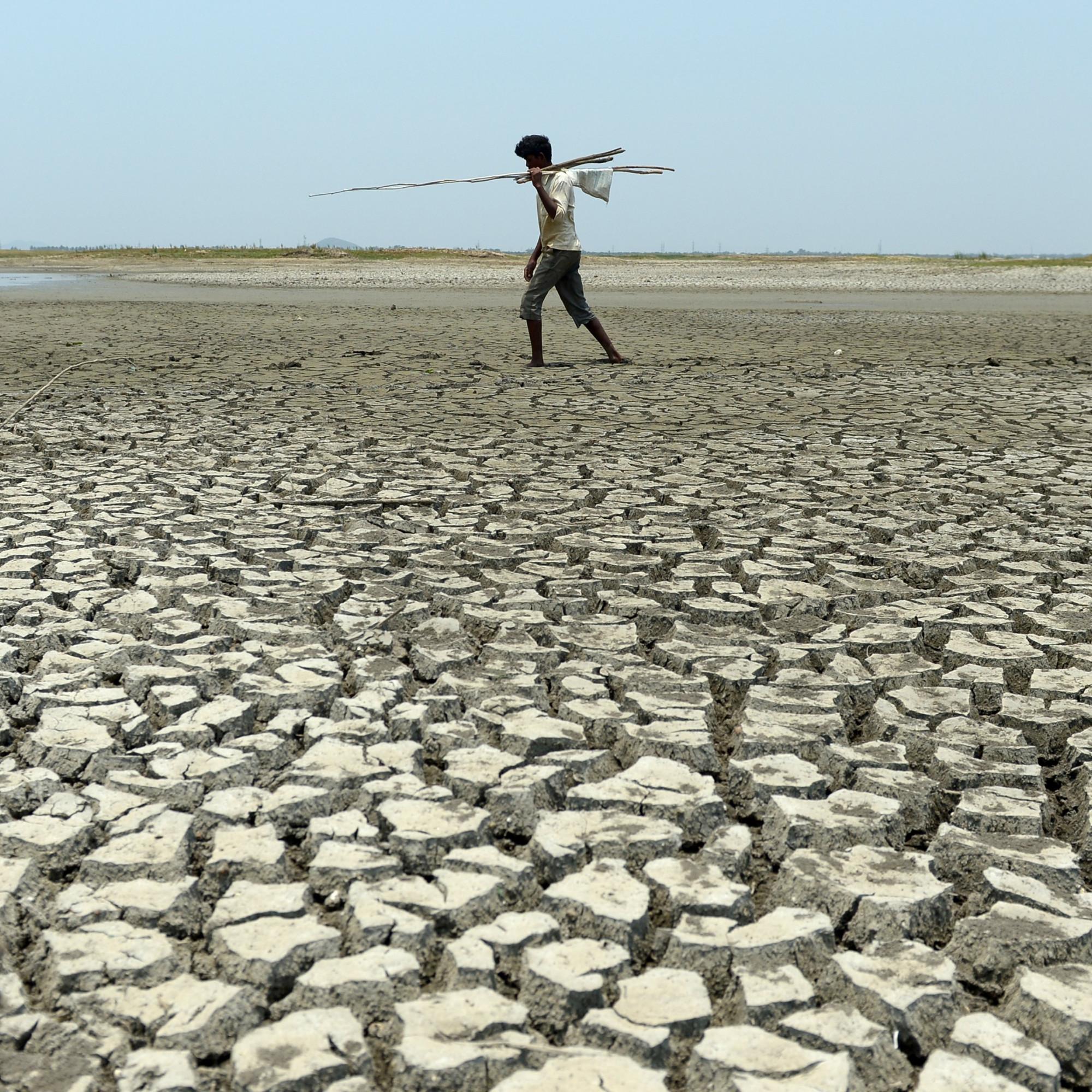 VIDÉO - D'ici 2100, jusqu'à 75 % des habitants de la planète risquent de mourir de chaud
