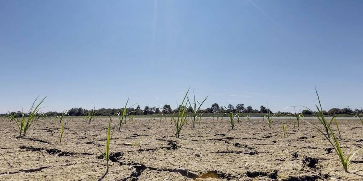 Réchauffement climatique: de nouvelles projections scientifiques très alarmantes
