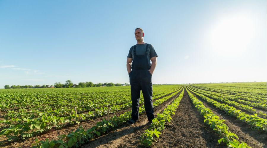 Ces agriculteurs racontent l'impact des pesticides sur leur santé