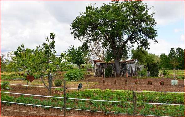 Une agriculture pour nourrir l'humanité, le défi du 21è siècle