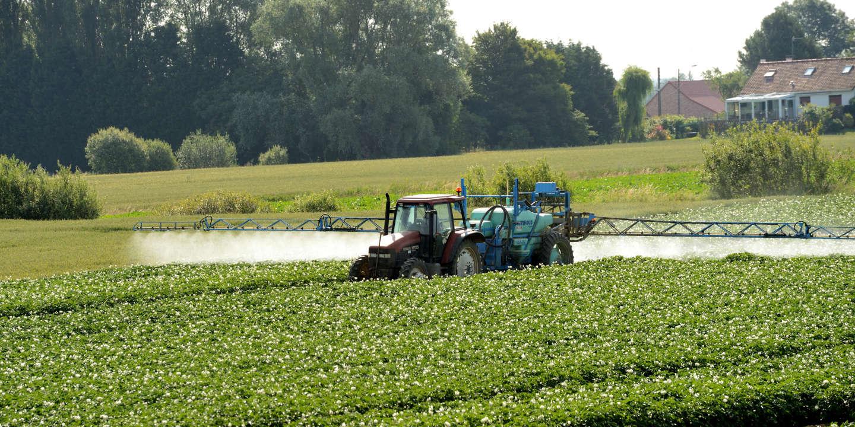 Pesticides: des substances toxiques, invisibles et omniprésentes