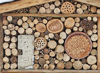 DIY : Fabriquer un hôtel pour les insectes