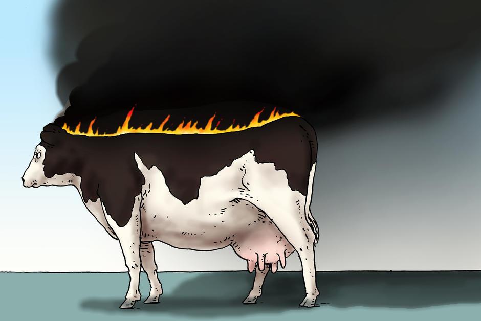 Réduire sa consommation de viande, indispensable pour la planète