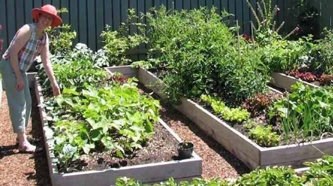 Les 5 Secrets Du Jardinage Sans Effort.