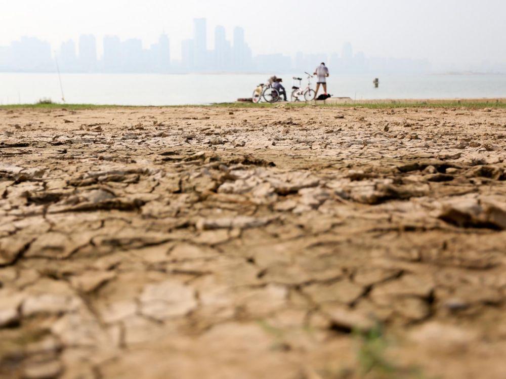 Réchauffement climatique : +5°C si on ne fait rien