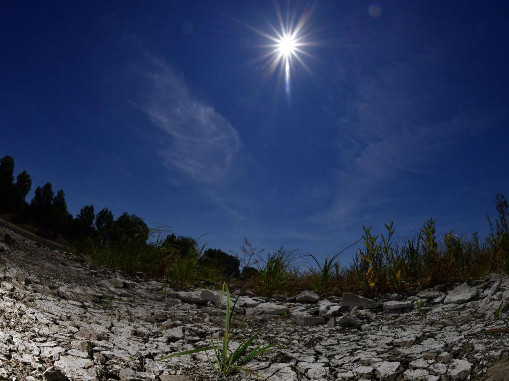 Canicule : les vagues de chaleur deux fois plus fréquentes d'ici 2050