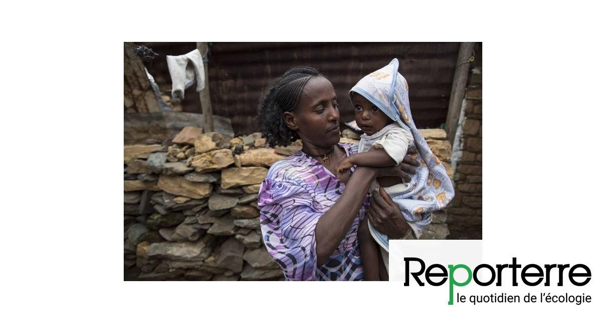 La faim dans le monde augmente à cause, notamment, du changement climatique