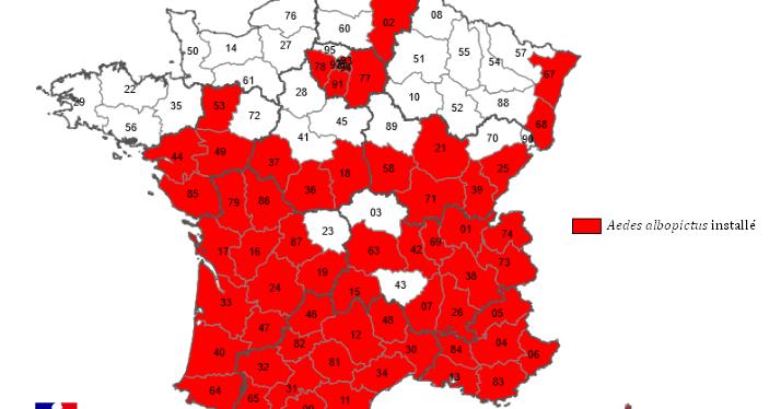 Cartes de présence du moustique tigre (Aedes albopictus) en France métropolitaine – Ministère des Solidarités et de la Santé