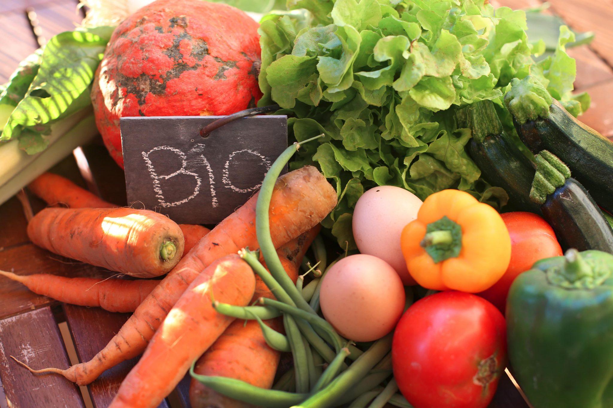 Pourquoi manger bio? Les avantages d'une alimentation biologique - Natura Force