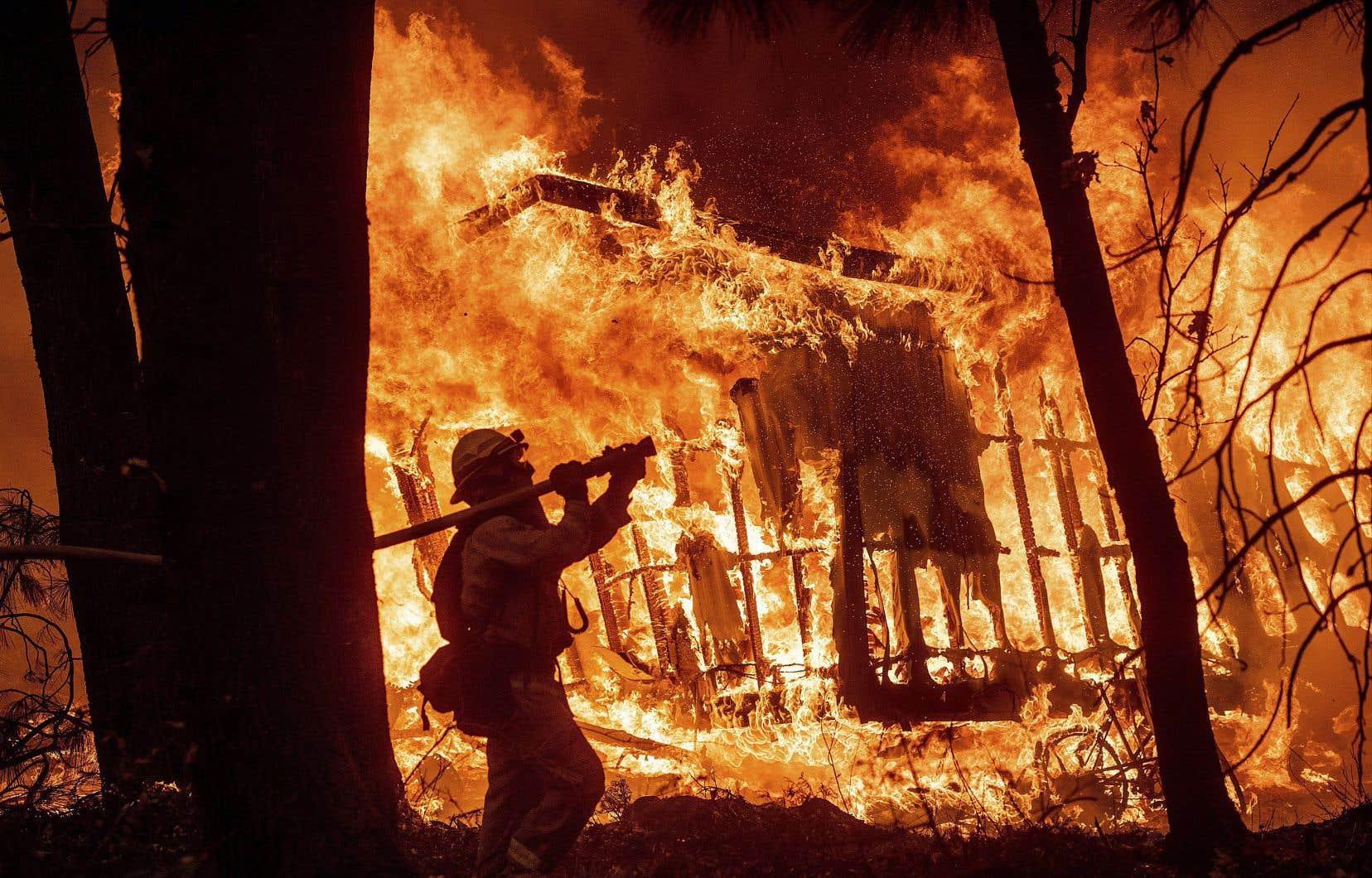 Le réchauffement climatique devenu risque systémique