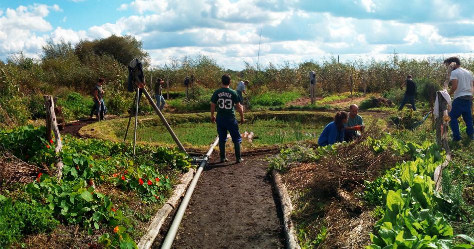 Les petites fermes sont le futur de notre alimentation, protégeons-les !