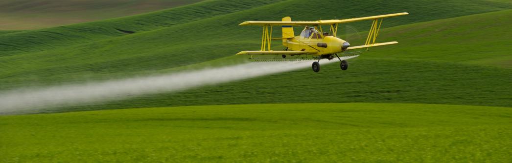 Pesticides - Effets sur l'environnement ?