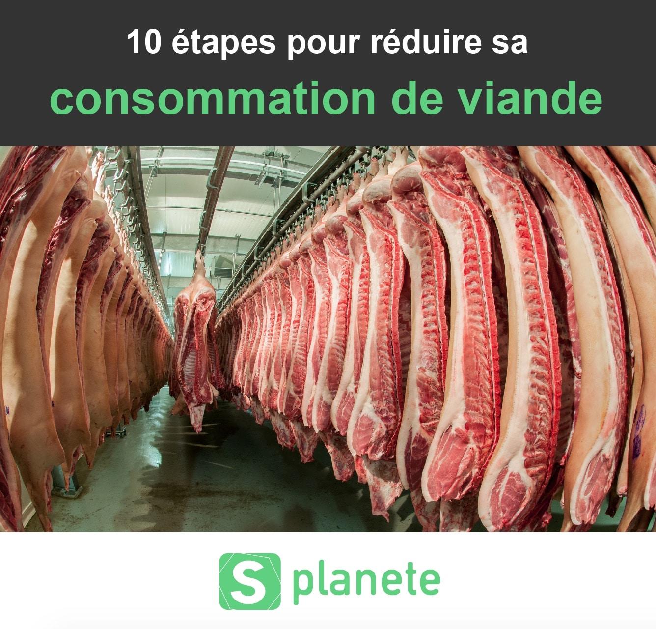 10 étapes pour réduire sa consommation de viande - Planète Healthy